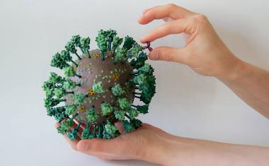 3D printed touchable coronaviruses