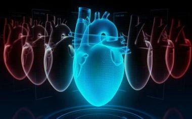 Neural network helps doctors explain relapses of heart failure