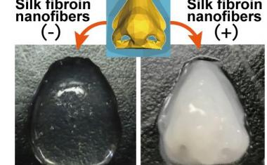 Silk improves bioink for artificial organs