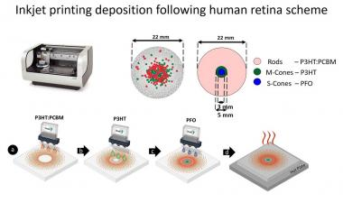 An inkjet-printed artificial retina model