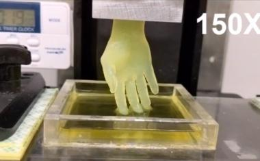 Rapid 3D printing moves toward bioprinted organs