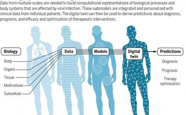Digital twins for more personalized medicine