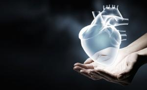 Using a virtual 3D heart to fight atrial fibrillation