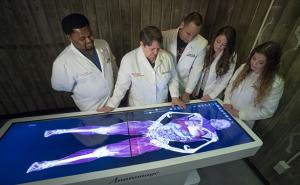 Digital cadavers transform medical education