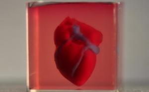 First heart 3D printed using patient's own cells