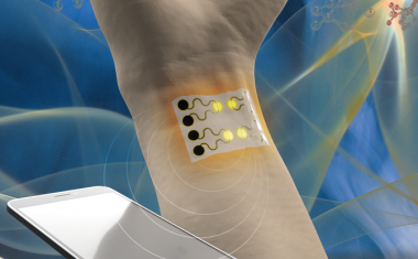 A wearable gas sensor for health monitoring