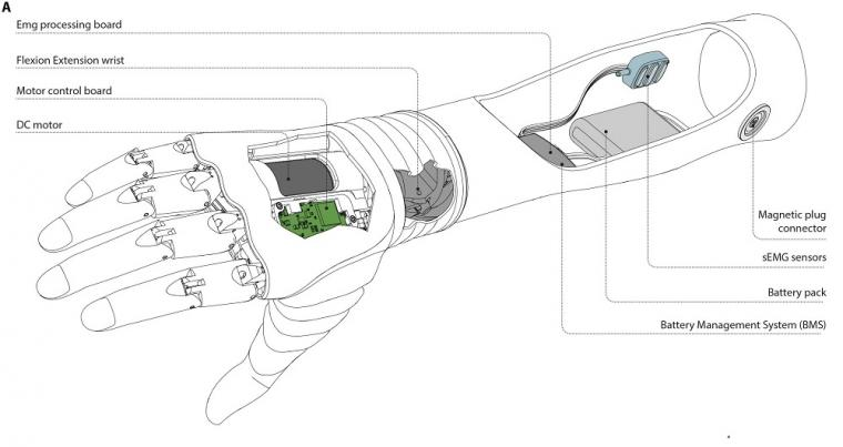 The architecture of the Hannes prosthetic hand.