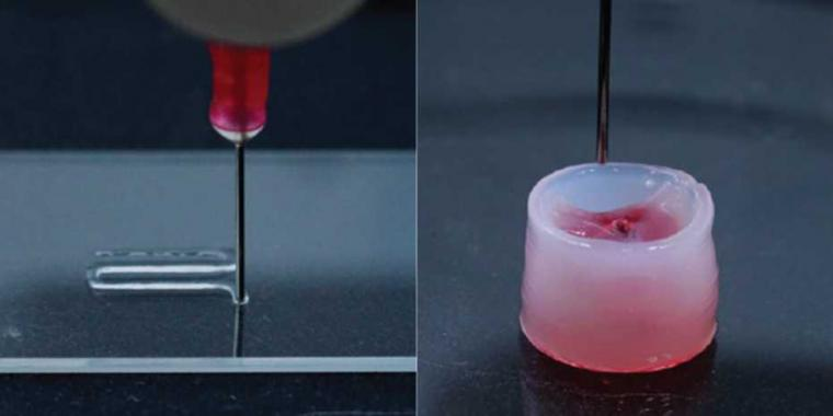 The new carrier ink can be used to produce personalized implants such as heart...