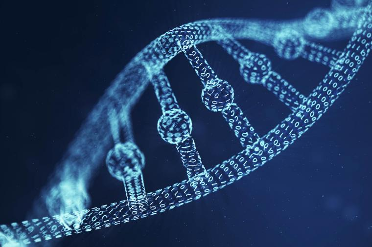 Researchers have developed an algorithm to allow researchers to study genetic...